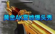 黄金AK雪地爆头秀
