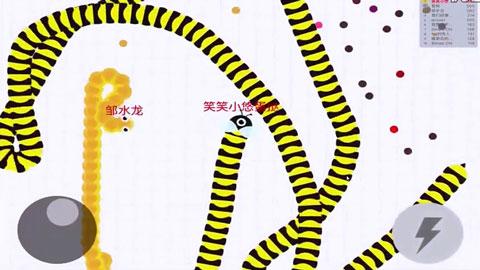 贪吃蛇大作战【蛋挞解说】第15期:悲催的蛋挞君