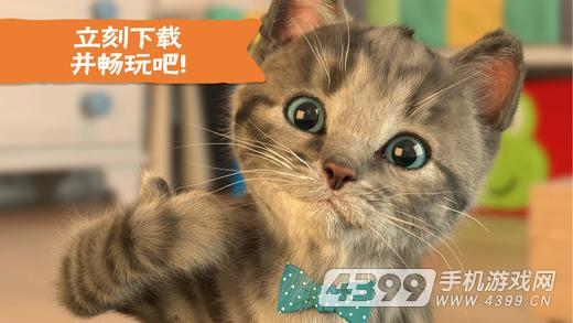我最喜爱的猫猫游戏截图