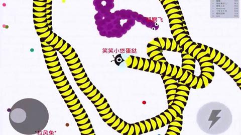 贪吃蛇大作战【蛋挞解说】第14期:无限模式继续找虐