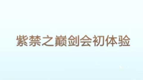 梦幻西游手游剑会群雄初体验 快速上分技巧