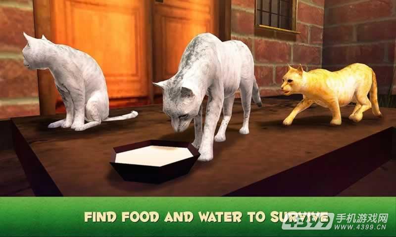 家猫模拟器游戏截图