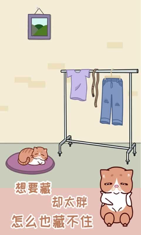 藏猫猫大作战