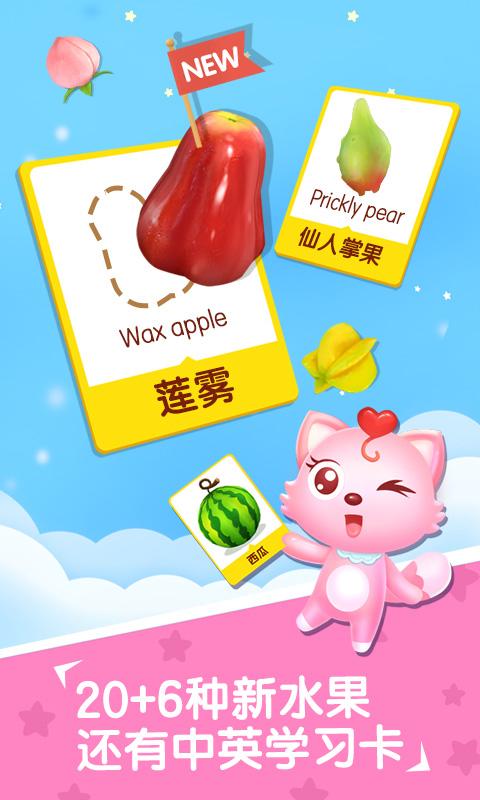 水果拼盘猫小帅