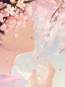 樱花下的你最美