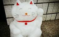 招财猫叫你进来咯