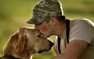 记!一条退役的部队军犬