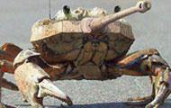 坦克版大闸蟹